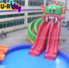 Polipo Inflatable Water Slide con la piscina