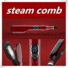Novo chega o pente cerâmico profissional do Straightener do cabelo do vapor do ferro elétrico