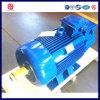 Тип мотор ротора раны крана мотора индукции 100kw