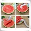 Articolo da cucina della taglierina dell'anguria per frutta (VK16011)