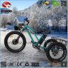 [ألومينوم لّوي] [500و] سمين إطار العجلة درّاجة ثلاثية كهربائيّة [فرونت فورك] هيدروليّة