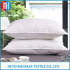 Vente en gros 100 coussins en coton / Gosoe plume vers le bas coussins / oreillers Insert pour Safa et literie