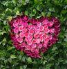 Симпатичные венки цветка искусственного шелка