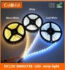 Streifen des lange Lebensdauer-hoher Lumen-DC12V SMD5730 LED