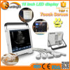 15 LCD Full-Digital Laptop Cheap Portable Veterinary Ultrasound Prices