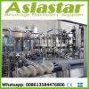 Machine de remplissage carbonatée personnalisée automatique de boisson de bouteille en verre