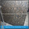 Brown baltico naturale colora i graniti di pietra per le mattonelle, le lastre, controsoffitti