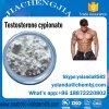 Safe&Fast Verschiffen-Steroid Puder-Testosteron Cypionate Prüfungs-CYP 200mg für Bodybuilding