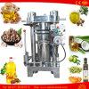 참깨 알몬드 땅콩 감기 - 눌러진 코코낫유 기계
