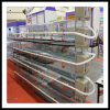 H Type 120 Birds Capacity Broiler Poultry Equipment em Farm africano (H-4L120)