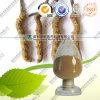 Polisacárido natural do extrato 10~50% de 100% Cordyceps Sinensis