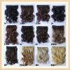 2013 новых зажима прибытия в выдвижениях волос (WL)