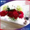 Rectángulo de acrílico modificado para requisitos particulares de la varia flor para las rosas
