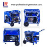 2kw Gasoline e Gas Bio Energy Powered Generators, Portable Generator