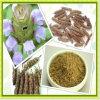 Extracto vulgaris del mejor Prunella del precio/polvo común del Fruta-Punto de Selfheal