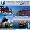 UK/Spain/Odessa/Russia에 콘테이너 Finally Door/Door Logistics 중국