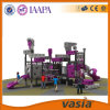 2016 nuovo Design Outdoor Playground per Kids da Vasia (VS2-6008B)