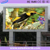 HD 발광 다이오드 표시 스크린을 광고하는 방수 옥외 풀 컬러