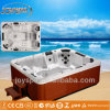 NewヨーロッパのDesignのセリウムOutdoor SPA TubおよびOutdoor Bathtub Jy8002