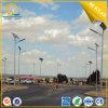 Энергосберегающий уличный свет светильника 6m Поляк 30W солнечный с панелью солнечных батарей