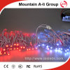 새로운 Arrival White 또는 Red Color LED Perforation Lamp String