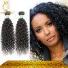 Kan het Geverfte Natuurlijke Weefsel van het Haar van het Menselijke Haar zijn Beste Krullende