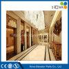 De Lift van de Lift van de Passagier van de luxe voor de Bouw van het Bureau van het Hotel