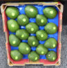 41X33cm Avocado-verpackenblasen-Frucht-Tellersegment-populärer Gebrauch im Australien-Markt
