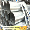 BS1139 & En39 48.3mm ERW Black Carbon Steel Scaffolding Pipes/Tubes