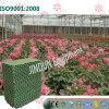 Garniture économiseuse d'énergie de refroidissement par eau pour la plantation de serre chaude de fleur