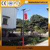 Qualitäts-Solarstraßenlaternemit Sonnenkollektor (12W)