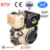 Moteur diesel de cylindre simple vertical réglé (ETK192F)