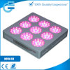 135*3W LED Grow Light mit CER und RoHS