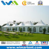 3MX3M Белый Алюминий ПВХ Пагода Палатка сочетании Вместе для большой партии