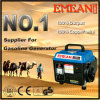 600W بدء اليد البنزين للمولدات 650W مع CE