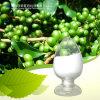 Acido clorogenico 25% 50% di caffè dell'estratto verde del chicco