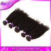 Cabelo Curly Kinky brasileiro do Virgin 4 do cabelo brasileiro do Virgin do vison pacotes de cabelo Curly profundo brasileiro não processado Curly de cabelo humano
