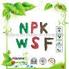 Fertilizante soluble en agua rápido del desbloquear 99.99% NPK con