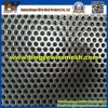 Perforated galvanizado Metal Mesh para Paper Production