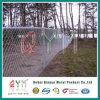 Загородка звена цепи соединения уединения PVC Coated для зеленого предохранения от поля
