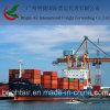 Frete de mar ultramarino barato das cargas de transporte de Guangzhou China a Le Havre