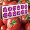 430W populares IP65 LED crecen ligeros para cultivar un huerto de la planta de interior (Apolo 12)