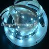 Indicatore luminoso di strisce impermeabile di alto lumen 5050SMD RGB LED della lista del LED