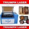 Minilaser-Ausschnitt-Gravierfräsmaschine für Kleinunternehmen-beweglichen LaserEngraver 6040 Triumphlaser