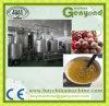 Terminar la máquina de proceso automática del zumo de fruta de pasión