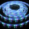 Indicatore luminoso della corda di SMD3528 RGBW LED