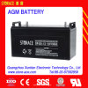 12V 100ah Industrial Maintenance Free 12V Batteries