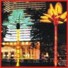 24V 205W 2m/3m/4m/5m Lighted Yellow LED Palm TreeかCoconut Lightfor Any Festival (CE/RoHS)