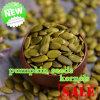 Зеленые стержени семян тыквы кожи Shine китайца