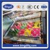 Refrigerador de cristal de Comsuption de las energías bajas de la puerta del helado